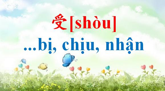 cach-dung-shou-bi-chiu-nhan