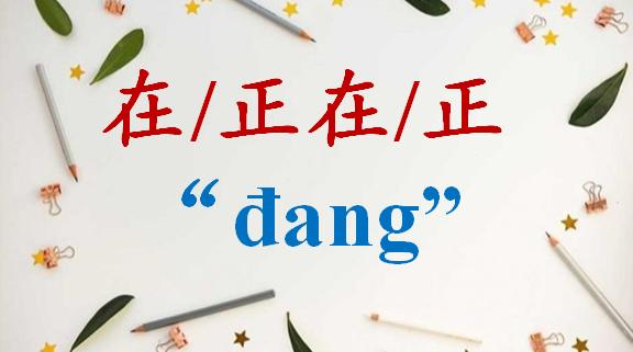 cach-dung-zai-zheng-zhengzai-dang